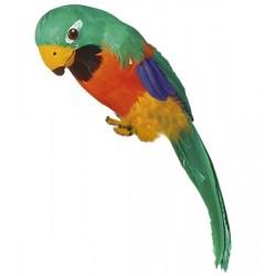 Papoušek Barva: Zelená