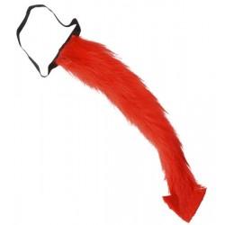 Červený ocas