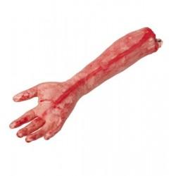 Krvavá paže
