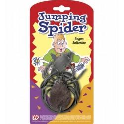 Pavouk skákací