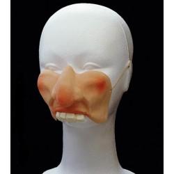 Nos a tváře