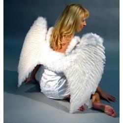 Křídla péřová 65x80cm